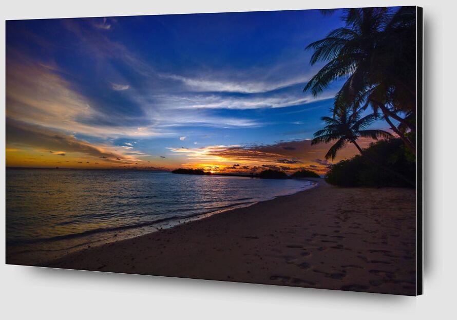 Tropical from Aliss ART Zoom Alu Dibond Image