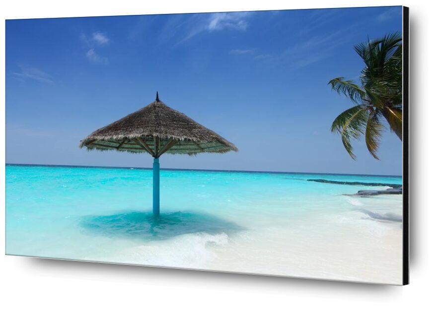 المالديف from Aliss ART, Prodi Art, palm, maldives, water, holiday, turquoise, tropical, travel, Sun, summer, sky, seashore, seascape, sea, sand beach, sand, resort, relaxation, parasol, paradise, ocean, nature, island, idyllic, color, beautiful, beach