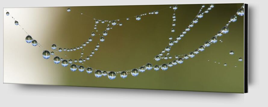 Drops on canvas from Aliss ART Zoom Alu Dibond Image