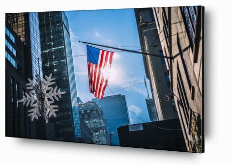 Le drapeau de Caro Li, Prodi Art, Photographie d'art, Contrecollage aluminium, Prodi Art