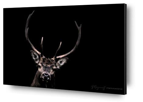 Le Fantôme des bois de Mayanoff Photography, Prodi Art, Photographie d'art, Contrecollage aluminium, Prodi Art