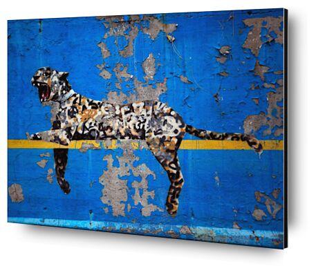 Bronx Zoo - BANKSY from AUX BEAUX-ARTS, Prodi Art, Art photography, Mounting on aluminium, Prodi Art