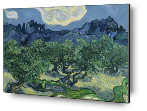 The Olive Trees - Van Gogh from AUX BEAUX-ARTS, Prodi Art, Art photography, Mounting on aluminium, Prodi Art