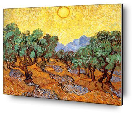Sun over Olive Grove - Van Gog... from AUX BEAUX-ARTS, Prodi Art, Art photography, Mounting on aluminium, Prodi Art