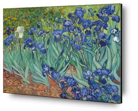 Irises - Van Gogh from AUX BEAUX-ARTS, Prodi Art, Art photography, Mounting on aluminium, Prodi Art