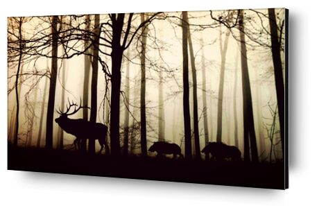 Silhouette of the forest from Pierre Gaultier, Prodi Art, Art photography, Aluminum mounting, Prodi Art