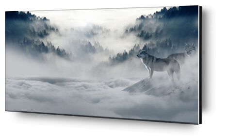 Solitary Wolves from Pierre Gaultier, Prodi Art, Art photography, Aluminum mounting, Prodi Art
