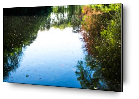 Le monde à l'envers de Marie Guibouin, Prodi Art, Photographie d'art, Contrecollage aluminium, Prodi Art