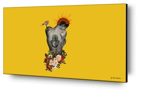 Demi-nue de IULIA CATINEANU, Prodi Art, Photographie d'art, Contrecollage aluminium, Prodi Art