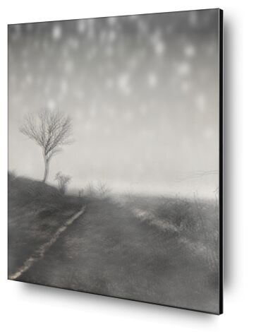 The winter path from Adam da Silva, Prodi Art, Art photography, Aluminum mounting, Prodi Art