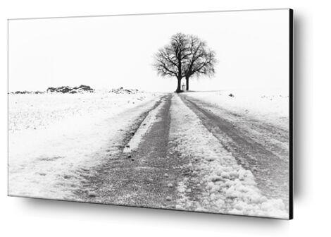 La Fin du Chemin de Eric-Anne Jordan-Wauthier, Prodi Art, Photographie d'art, Contrecollage aluminium, Prodi Art