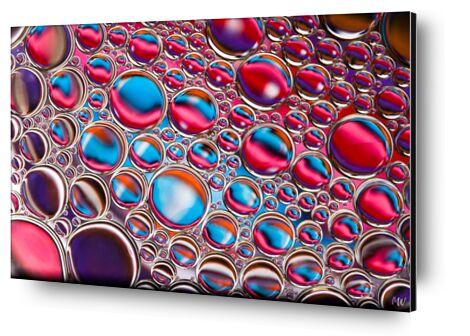 Oily bubbles #12 from Mickaël Weber, Prodi Art, Art photography, Aluminum mounting, Prodi Art