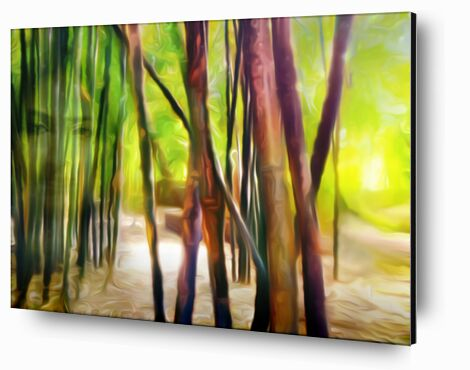 Behind the bamboos from Adam da Silva, Prodi Art, Art photography, Aluminum mounting, Prodi Art