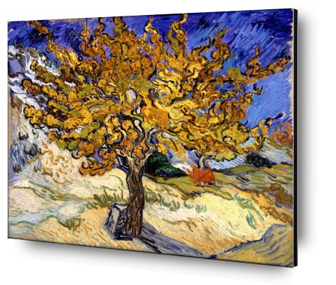 Mulberry Tree at  Saint-Rémy - 1889 VINCENT VAN GOGH from Aux Beaux-Arts, Prodi Art, Art photography, Aluminum mounting, Prodi Art