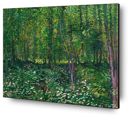 Trees and undergrowth - VINCENT VAN GOGH 1887 from Aux Beaux-Arts, Prodi Art, Art photography, Aluminum mounting, Prodi Art