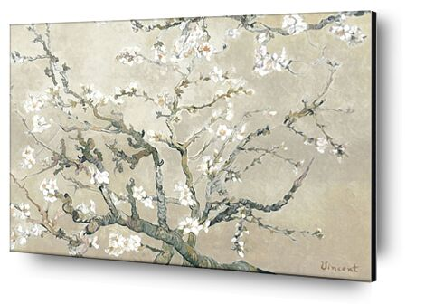 Almond Branches in Bloom, San Remy - VINCENT VAN GOGH 1890 from Aux Beaux-Arts, Prodi Art, Art photography, Aluminum mounting, Prodi Art