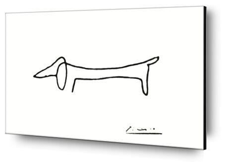 Le chien - PABLO PICASSO de Aux Beaux-Arts, Prodi Art, Photographie d'art, Contrecollage aluminium, Prodi Art