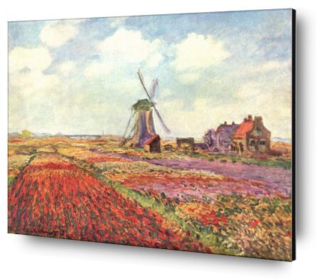 Tulip fields in Holland - CLAUDE MONET 1886 from Aux Beaux-Arts, VisionArt, Art photography, Aluminum mounting, Prodi Art