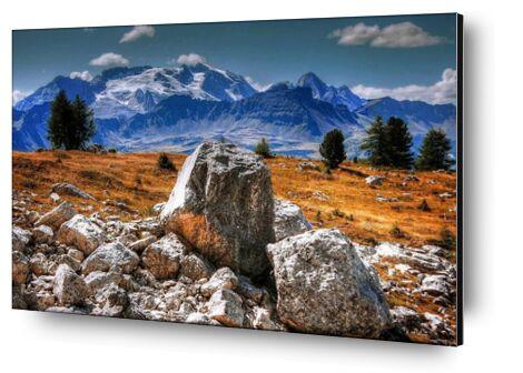 Aventure from Aliss ART, Prodi Art, Art photography, Mounting on aluminium, Prodi Art