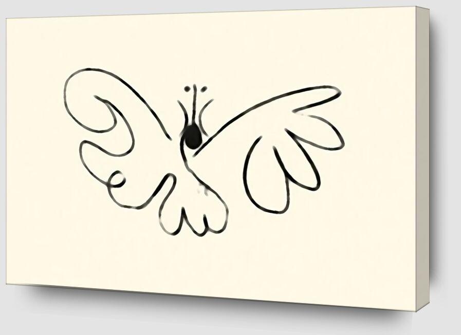 La papillon - Picasso de AUX BEAUX-ARTS Zoom Alu Dibond Image