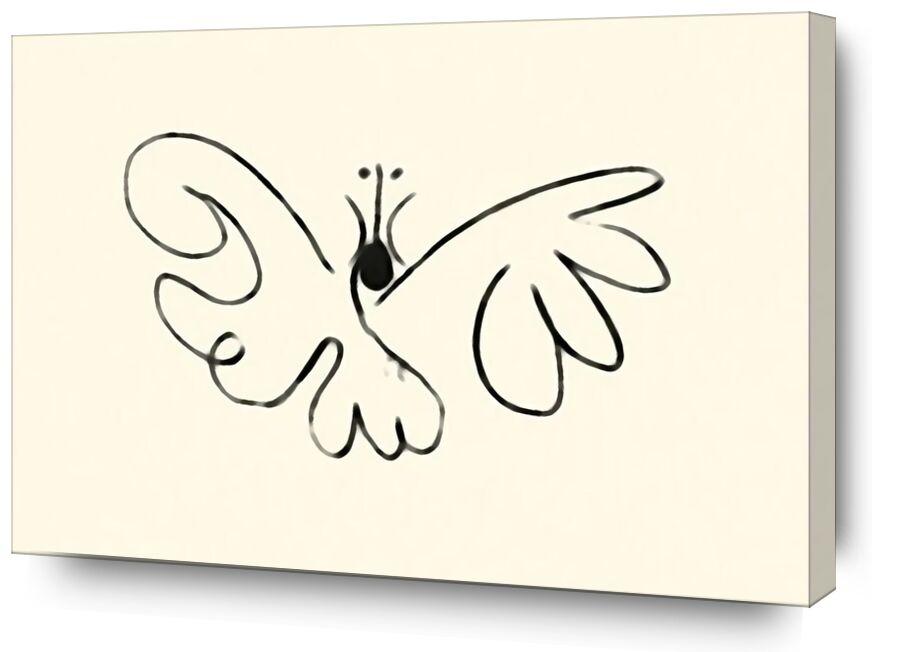 La papillon - Picasso de AUX BEAUX-ARTS, Prodi Art, papillon, picasso, dessin, traits