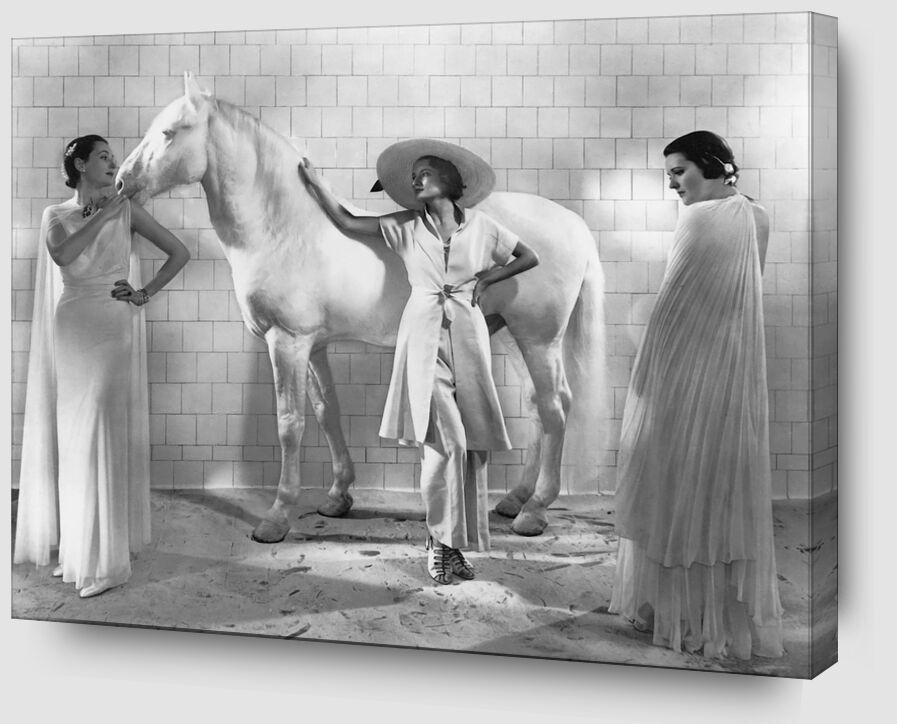 Vogue, Janvier 1936 - Edward Steichen de AUX BEAUX-ARTS Zoom Alu Dibond Image