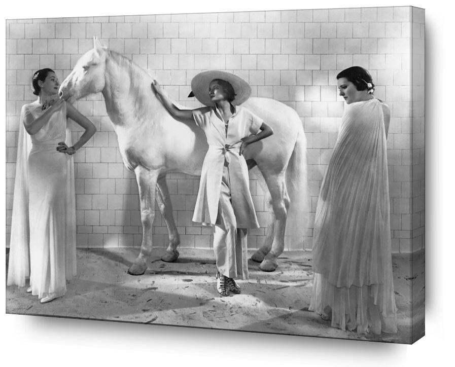 Vogue, Janvier 1936 - Edward Steichen de AUX BEAUX-ARTS, Prodi Art, Edward Steichen, femmes, cheval, mode, chapeau, robe
