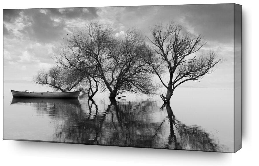 Le bateau et son attache - Ansel Adams 1942 de AUX BEAUX-ARTS, Prodi Art, infini, barque, ANSEL ADAMS, ciel, nuages, noir et blanc, Lac, arbre, bateau