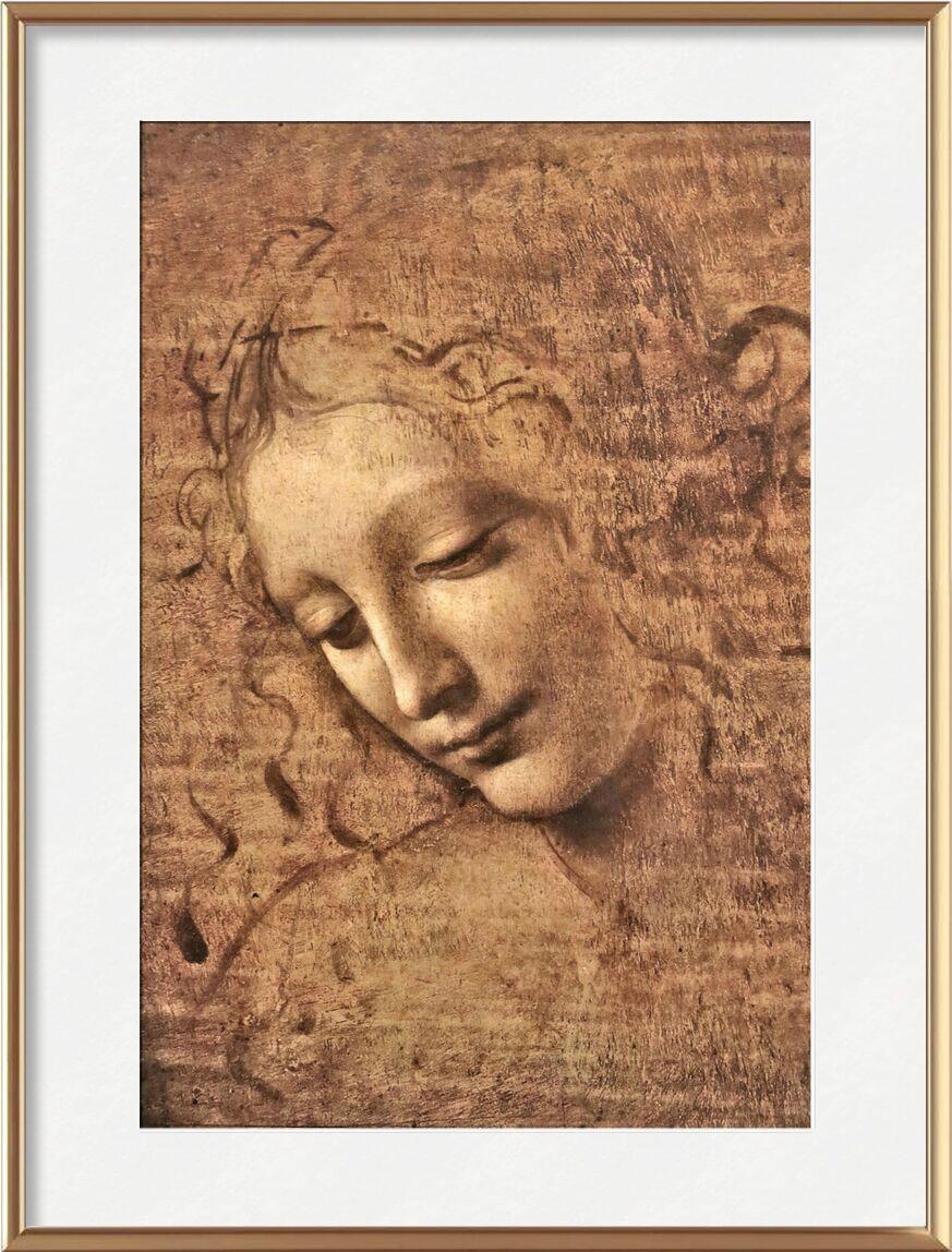 La Scapigliata - Leonardo da Vinci from AUX BEAUX-ARTS, Prodi Art, woman, portrait, Leonard de Vinci, pencil drawing