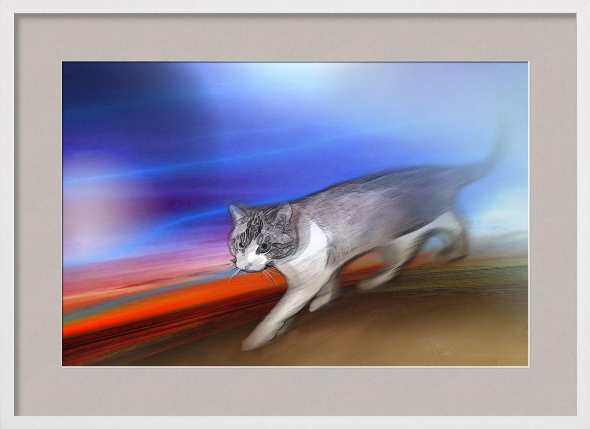 Twix from Adam da Silva, Prodi Art, colors, red, blue, animal, Cat, pet, digital art