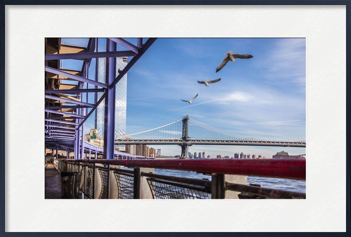 Manhattan Bridge from Caro Li, Prodi Art, NY, Manhattan Bridge, Photography, pont, photography, USA, United States, new york
