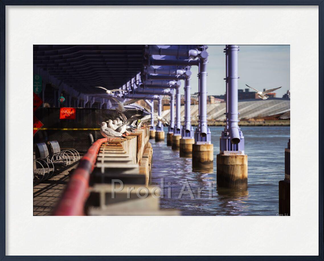 Under The bridge from Caro Li, Prodi Art, photography, Photography, Dear Li, new york, USA, Manhattan, Under The Bridge, Unted States, United States
