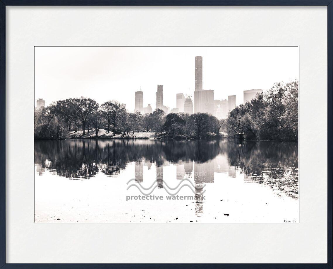 Central Park  -  New York de Caro Li, Prodi Art, Manhattan, rue, New York, Parc central, USA, Photographie, la photographie, états-unis, Cher Li, Noir blanc