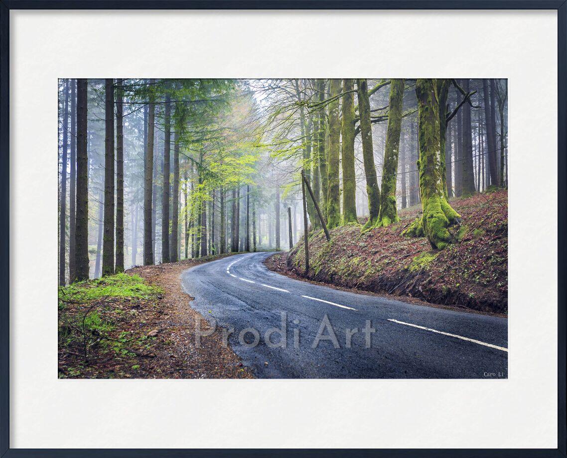 The way from Caro Li, Prodi Art, landscape, landsacape
