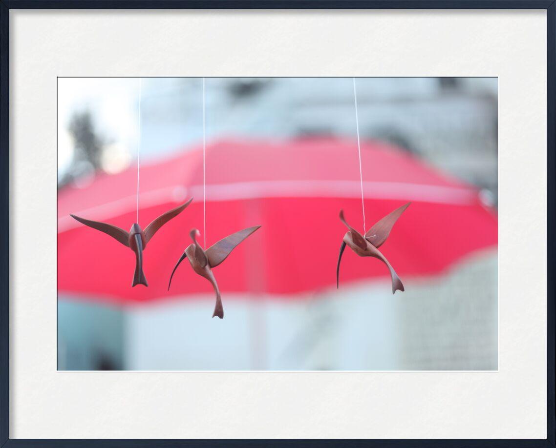 Envol de Stéphanie Bobault, Prodi Art, oiseaux