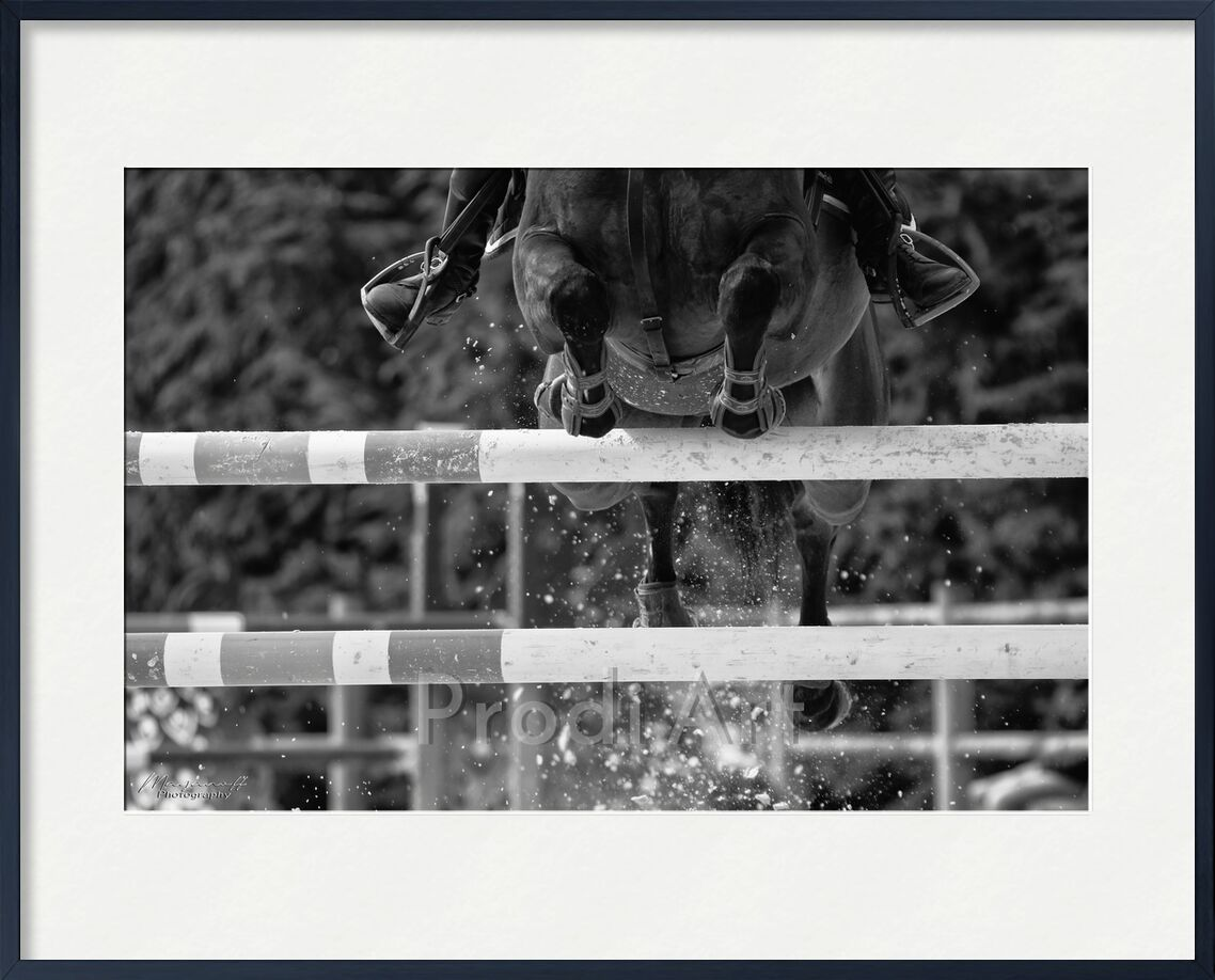 The crossing from Mayanoff Photography, Prodi Art, equestrian, horse, competition, obstacles, equestrian, horse, jumping, competition, show jumping, cavalier, jump, rider