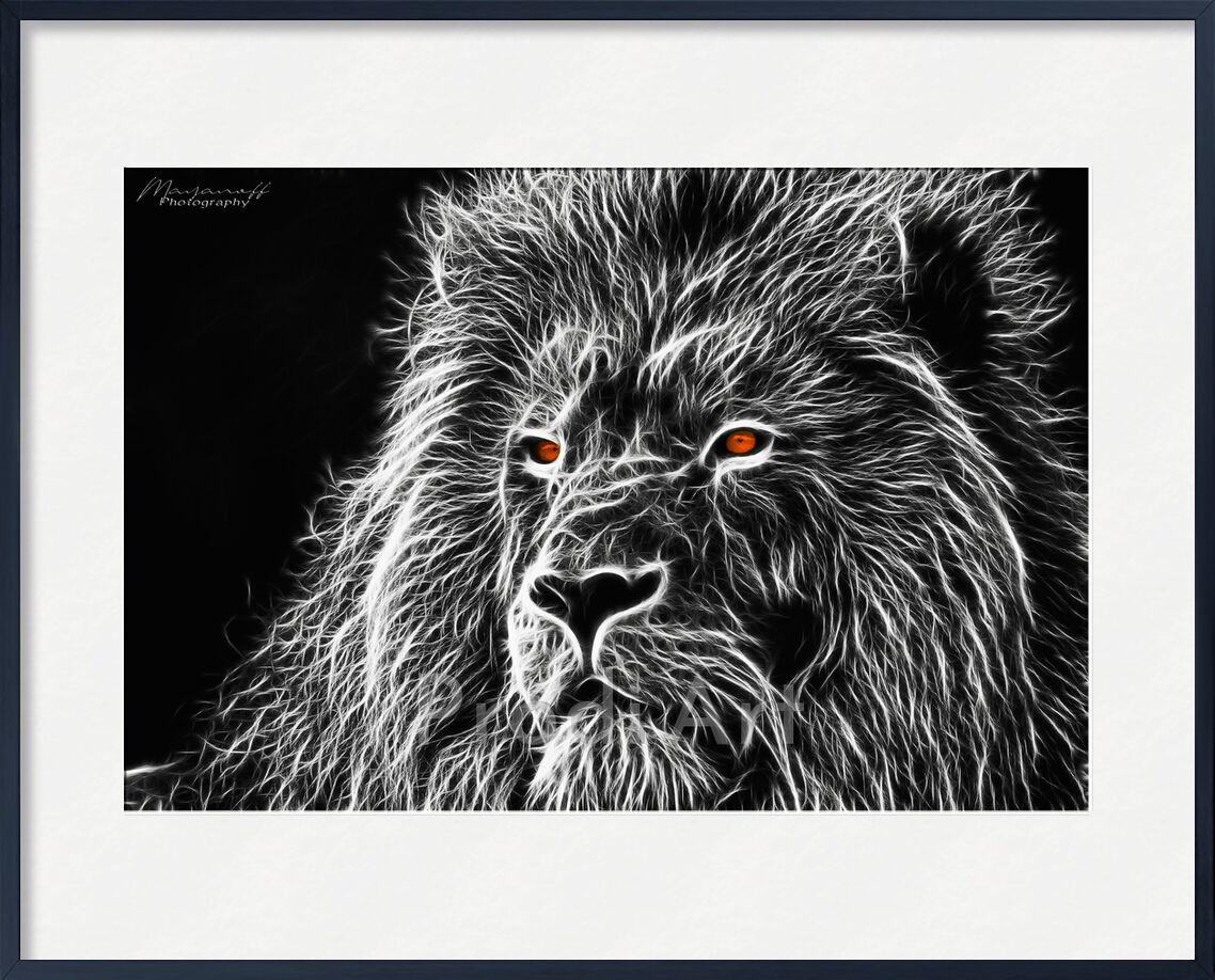 Feline gaze from Mayanoff Photography, Prodi Art, Lion, feline, painting, fractalius, black White, monochrome, animal, regard, feline, painting, Black & White, gaze