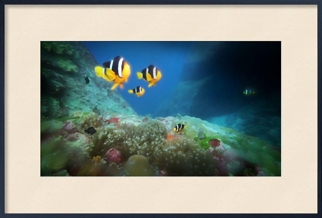 The world below from Adam da Silva, Prodi Art, Pisces, ocean, sea, depth, waters