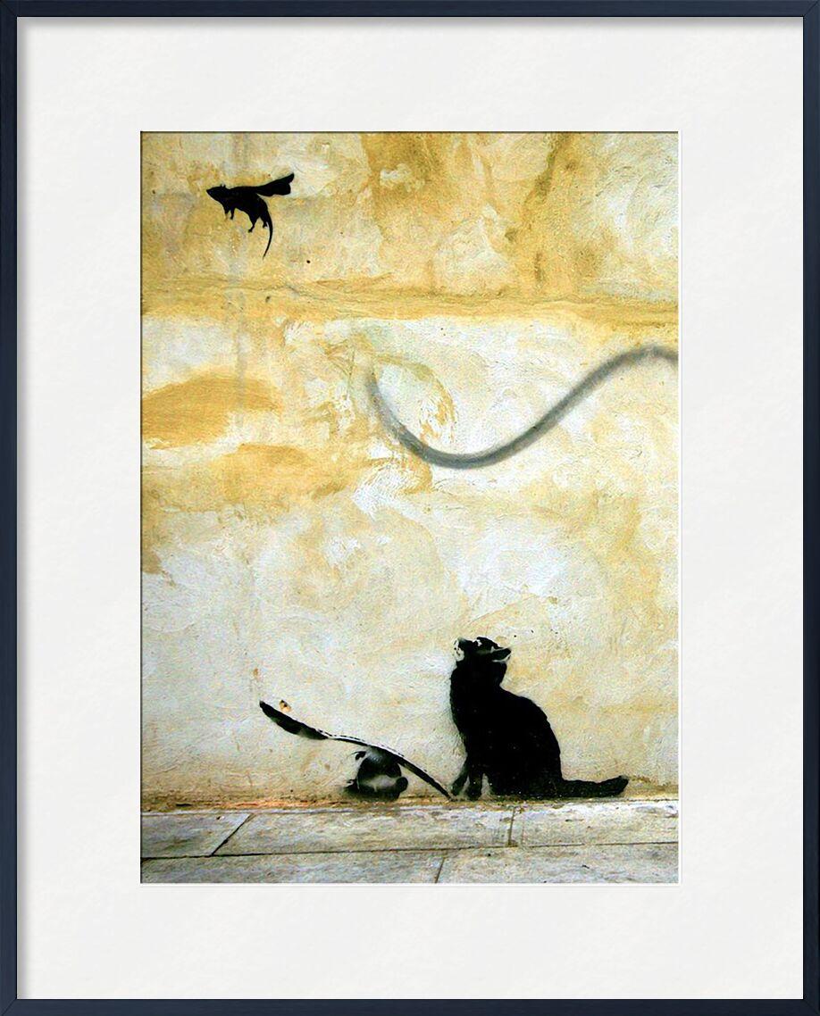 Cat - BANKSY von AUX BEAUX-ARTS, Prodi Art, Graffiti, banksy, Katze, Straßenkunst