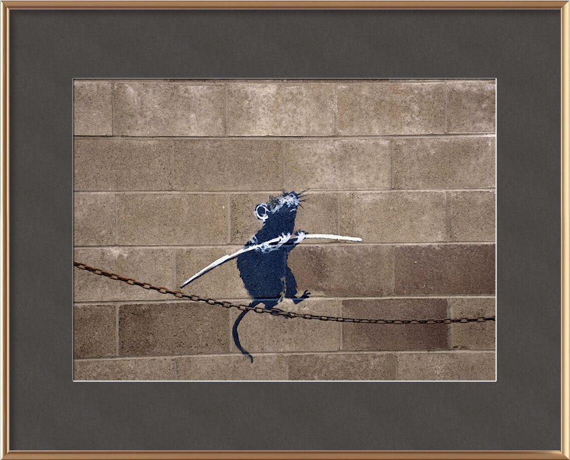 La Corde Raide - BANKSY de AUX BEAUX-ARTS, Prodi Art, rat, graffiti, art de rue, Banksy
