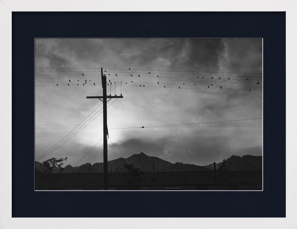 Birds on Wire, Evening - Ansel Adams from AUX BEAUX-ARTS, Prodi Art, ANSEL ADAMS, mountains, birds, sky, Sun, black-and-white