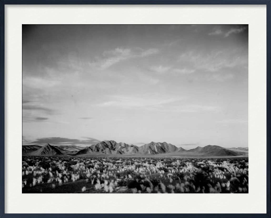 View Of Montains Desert Shrubs Highlighted - Ansel Adams from AUX BEAUX-ARTS, Prodi Art, ANSEL ADAMS, black-and-white, mountains, shrubs