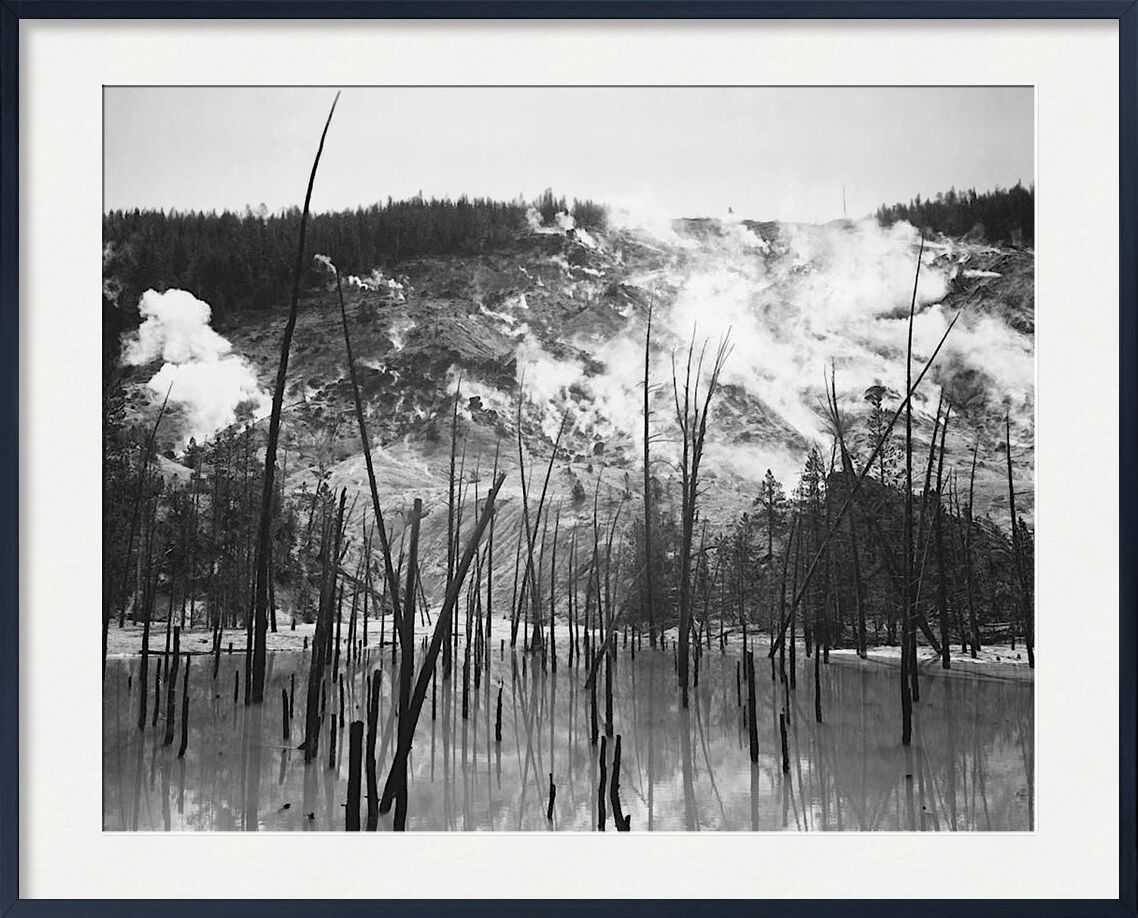Rocky Mountain National Barren trunks in water near steam rising from mountains - Ansel Adams from AUX BEAUX-ARTS, Prodi Art, troncs, trees, steam, mountains, ANSEL ADAMS
