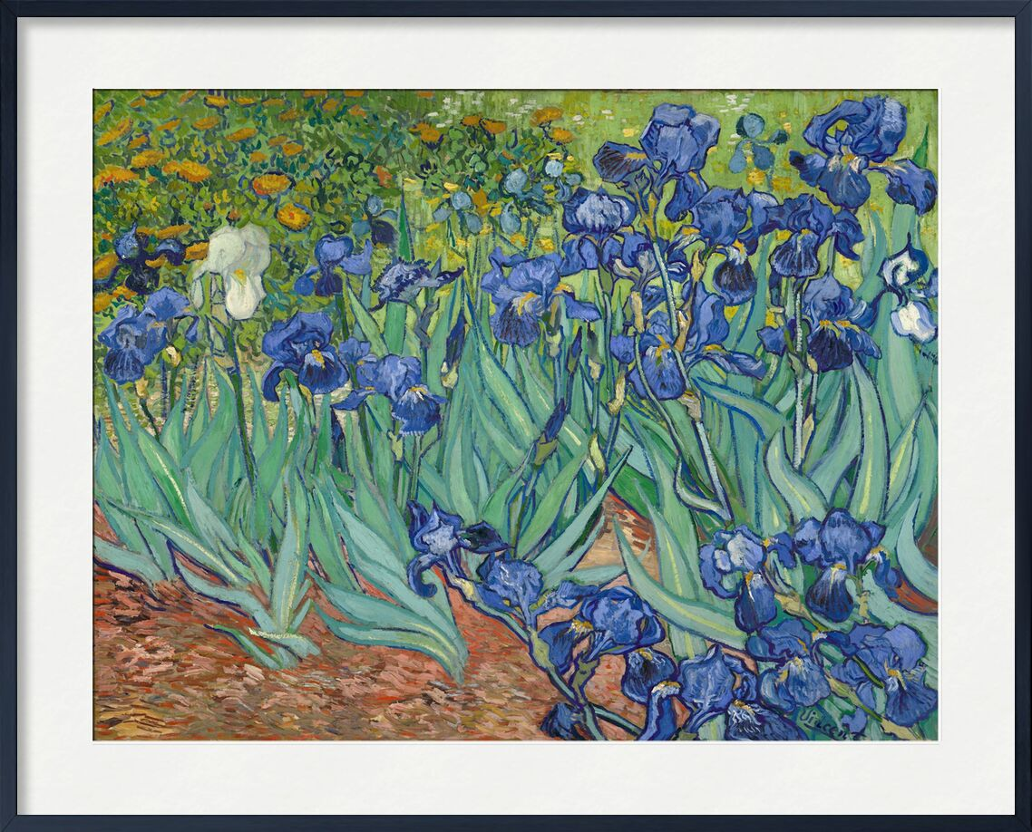 Irises - Van Gogh from AUX BEAUX-ARTS, Prodi Art, Van gogh, painting, iris, garden, flowers