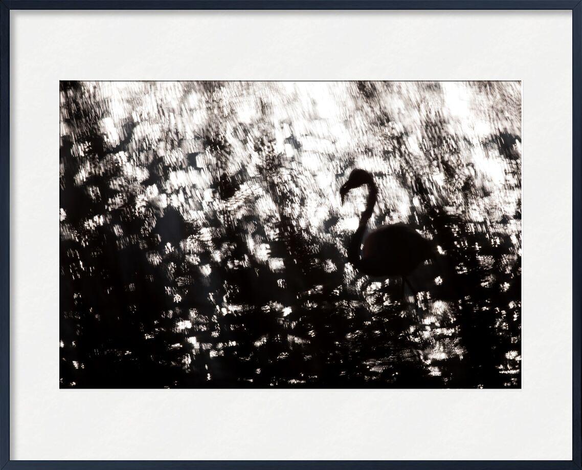 Apparition de Emilie Tournier, Prodi Art, Animal pluricellulaire, des oiseaux, des oiseaux, camargue, L'Europe , France, oiseau, Vertébré, animal, artistique, impression, tamaris, Bouches-du-Rhône, Flamant rose, Flamant rose, Les Saintes Maries de la Mer, Phoenicopterus roseus, Phénicoptéridés, Phoenicoptéridés, Phénicoptériformes, Pont de Gau, Provence-Alpes-Côte-d'Azur, région PACA, échassier