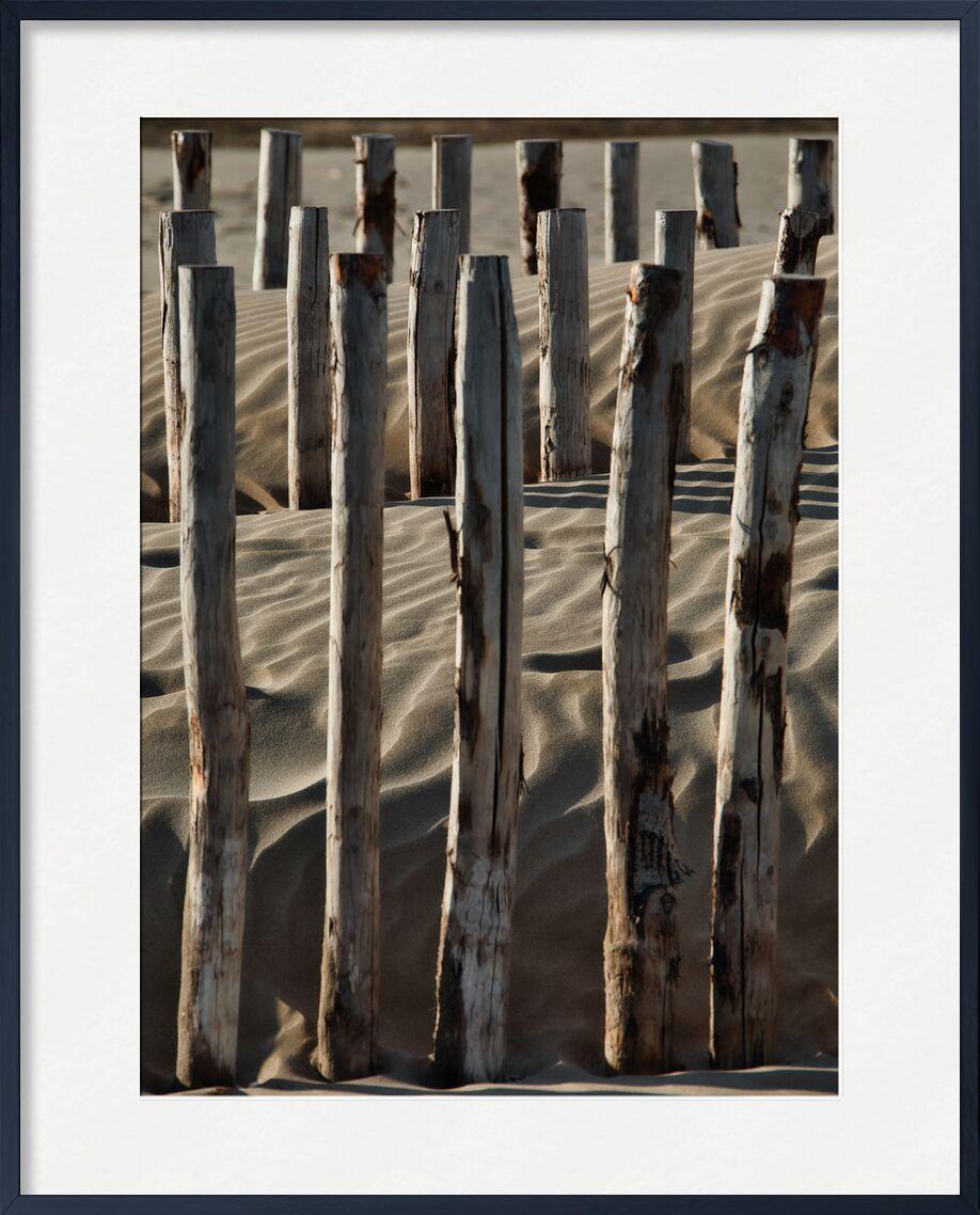 Les ganivelles de Gruissan de Céline Pivoine Eyes, Prodi Art, sable, Voyage, architecture, nature, poteau, bois, plage, gruissan, Femme photographe, Ganivelles