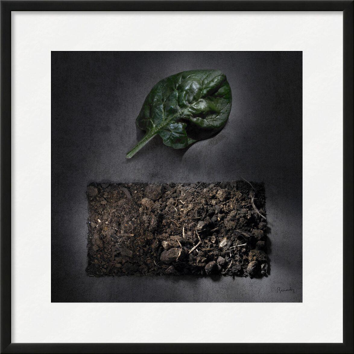 Goal LAND!  #5 from jean michel RENAUDIN, Prodi Art, arable land, processing, lands, humus, transformation, fruits, compost, topsoil, Sun, vegetables