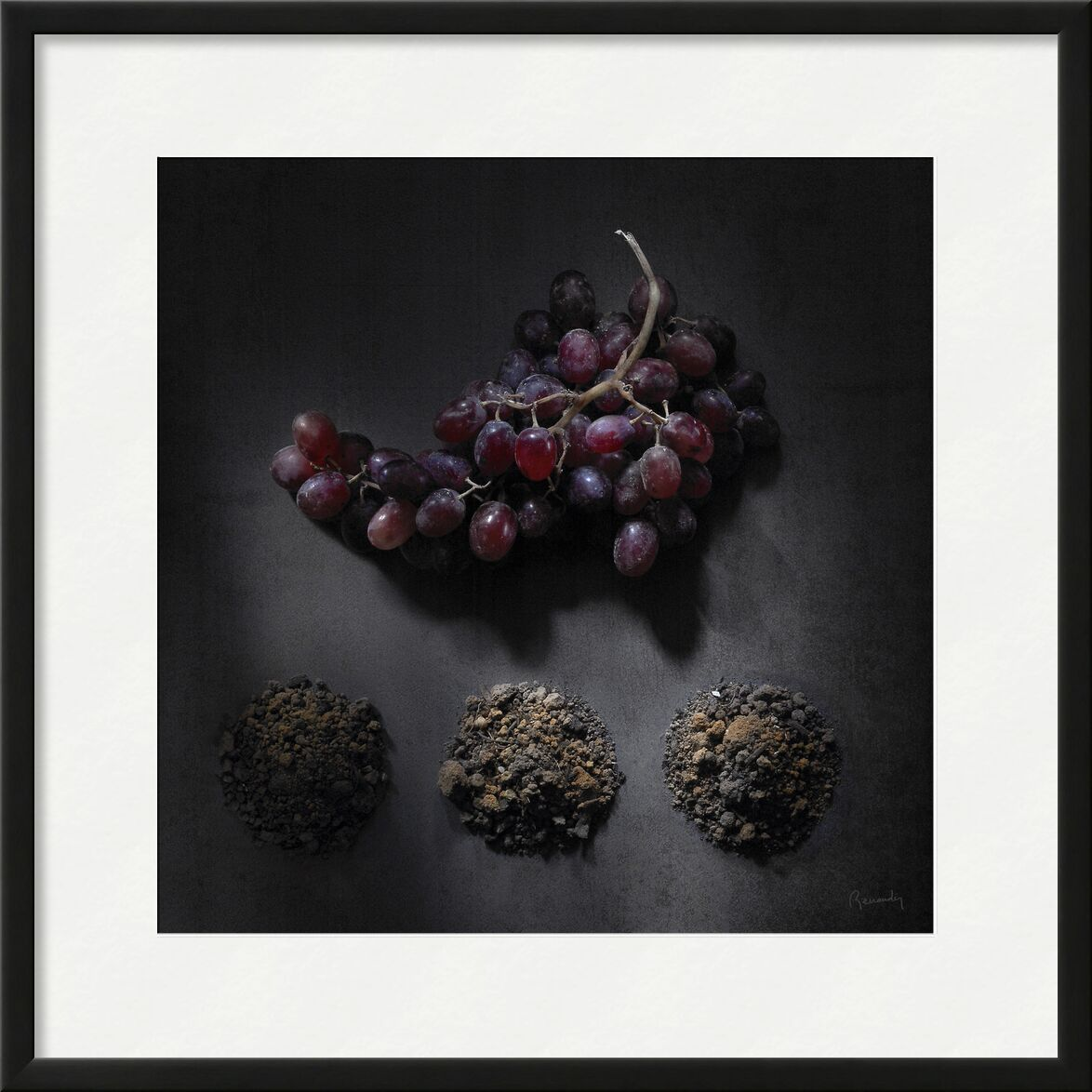 Objectif TERRE !  #11 de jean michel RENAUDIN, Prodi Art, terres, humus, fruits, des légumes, transformation, compost, terre végétale, Sol, des légumes, En traitement, terre végétale, terres arables