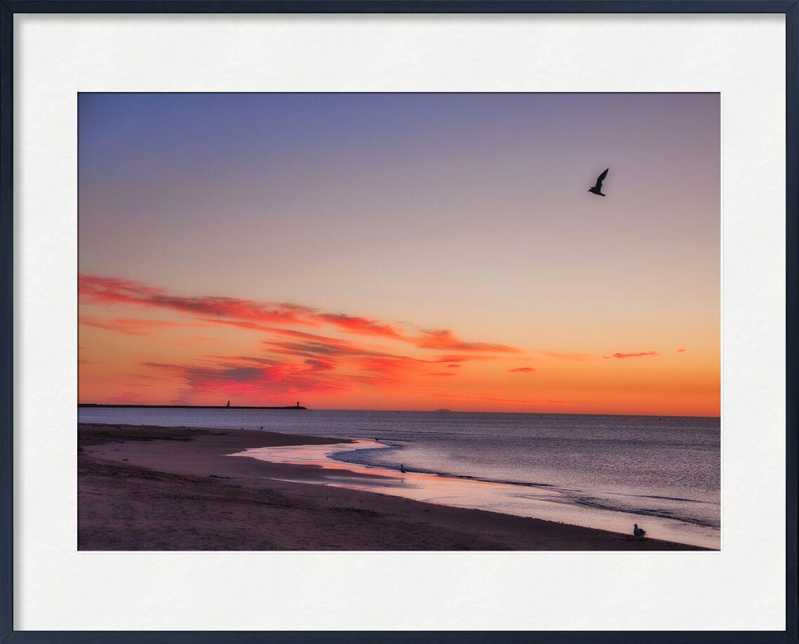 La plage de Gruissan de Céline Pivoine Eyes, Prodi Art, oiseau, envol, Orange, Aube, lever de soleil, lever du soleil, gruissan, plage, mer, paysage, Voyage, nature