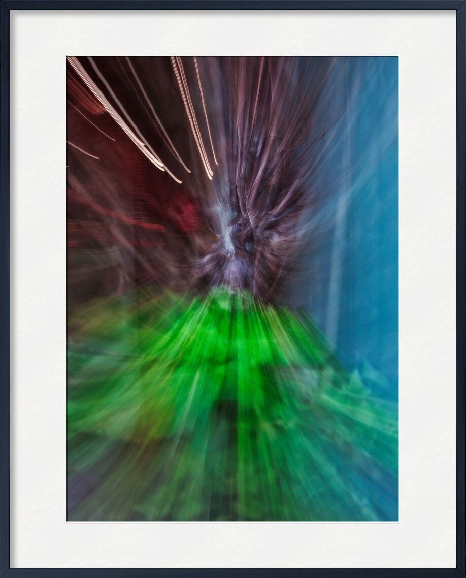 La vigne de Céline Pivoine Eyes, Prodi Art, Mouvement intentionnel de la caméra, ICM, Photographie abstraite, art abstrait, flou artistique, paysage, fleurs, plante, nature, vigne, Raisin